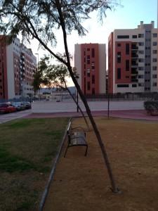 árboles_a_punto_de_caer_por_el_viento