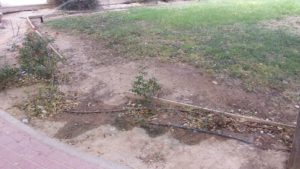 Zona jardín estropeado 4 (Plaza Open Futura)