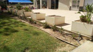 Zona jardin arreglado 1 (Plaza Open Futura)