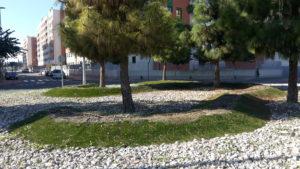 2016-12-07 Rotonda sin flores