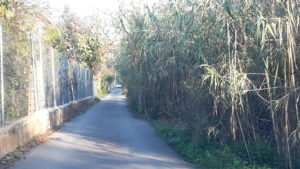2016-12-14 Mal estado calle Doctor de la Peña - Foto 4