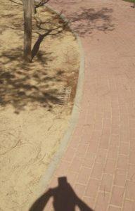 2017-03-11 - Imbornal junto a árbol una vez limpiado.
