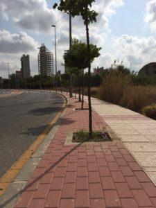 2018-09-20 Alcorques Avenida Joven Futura limpios