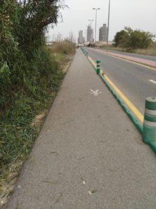 Plantas recortadas que invadían el acceso peatonal a Joven Futura