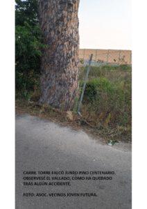 200602 Denuncia Carril Torre Falcó - Espinardo