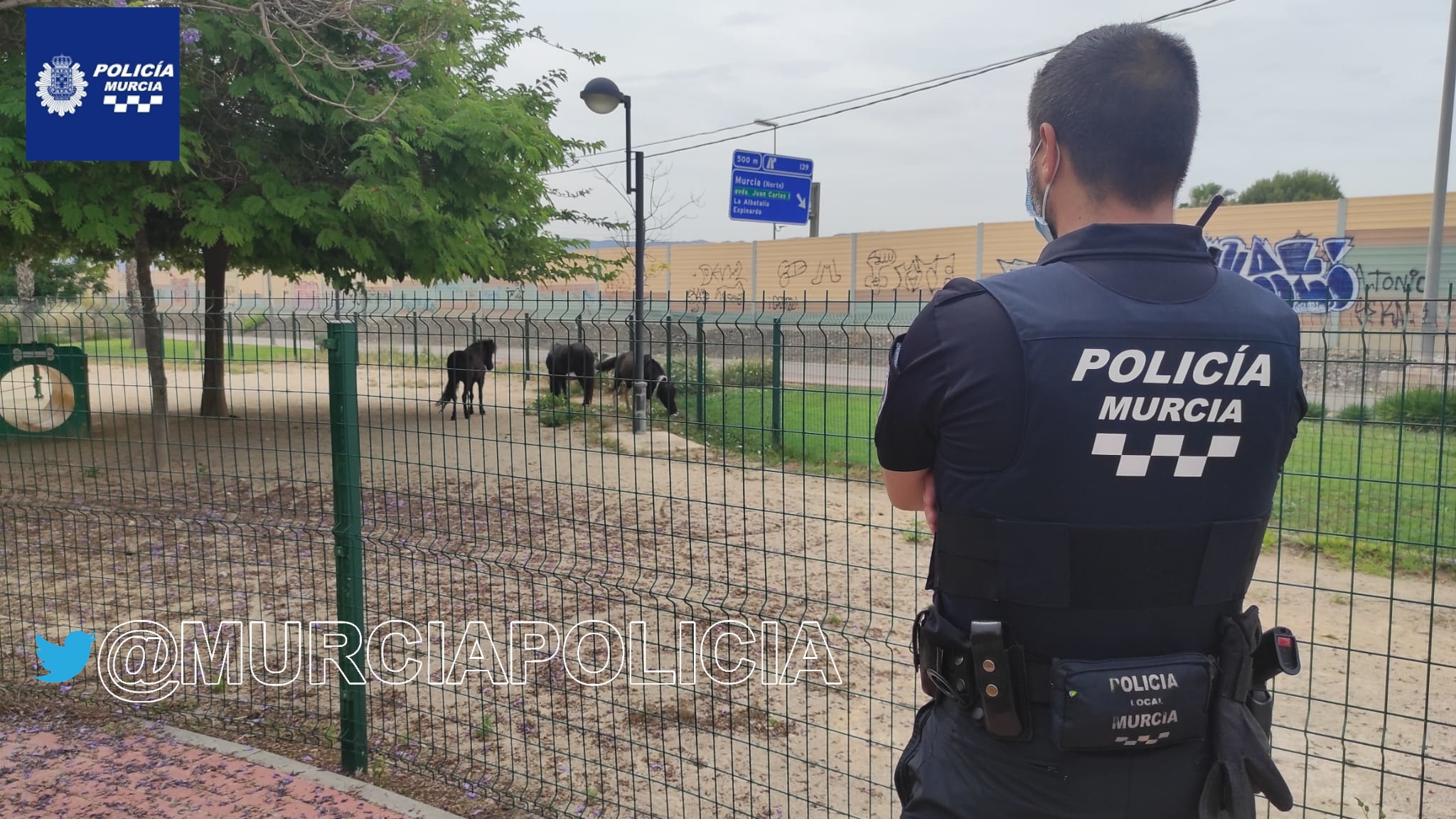 2021-05-28 Tres ponis en Joven Futura - murciapolicia